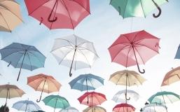 La protection sociale de l'auto-entrepreneur