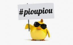 Réforme Pinel : #LesPoussins sortent un sondage inquiétant