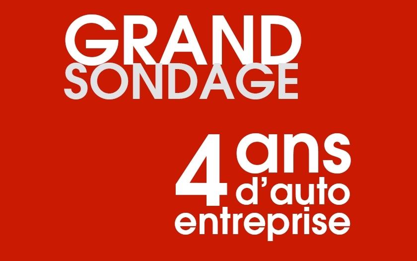 4 ans d 39 auto entreprise for Idee auto entreprise