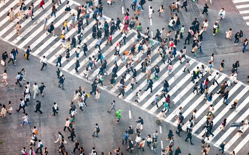 Auto Entrepreneur Etre Dans Les Clous En Cas De Controle De L